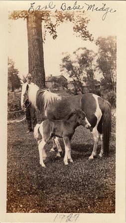 Earl Sullivan with Babe & Midge - 1927