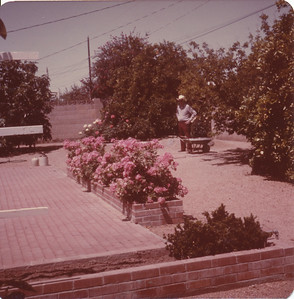 Irvin Reed 1975 (Elba Gottschalk Reeds husband)