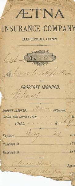 Insurance (Cornelius Sullivan)