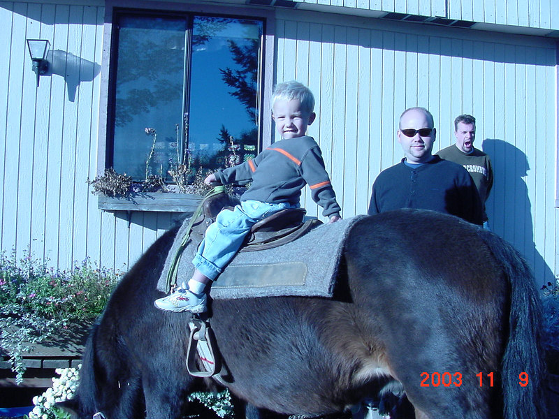 Ansey, this was the last winter we ever rode him.  He died the next year.