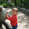 A visit to the National Zoo with Charlotte.
