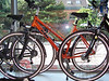 Bicycles in the window of a Kiel bike shop
