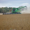 Our neighbor harvesting soybeans.