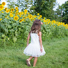 View More: http://lauraklacikphotography.pass.us/johnson-sunflowers