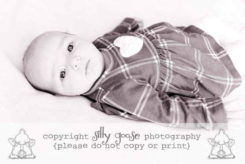 SGP B&W Copy-0162