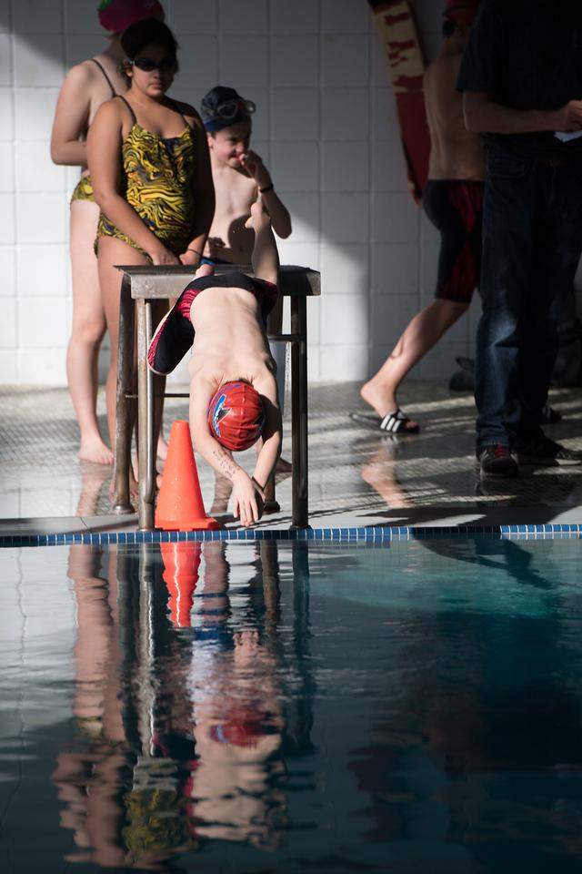 Swim Meet - Spfld-3131