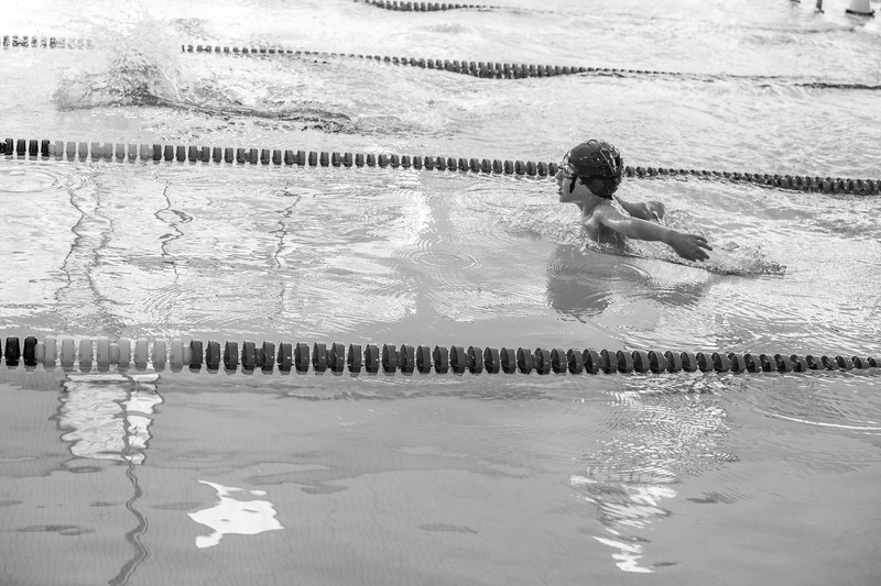 Swim Meet - Spfld-3080
