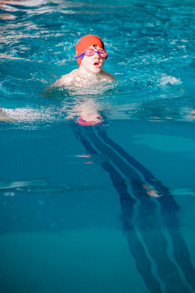 Swim Meet - Spfld-3141