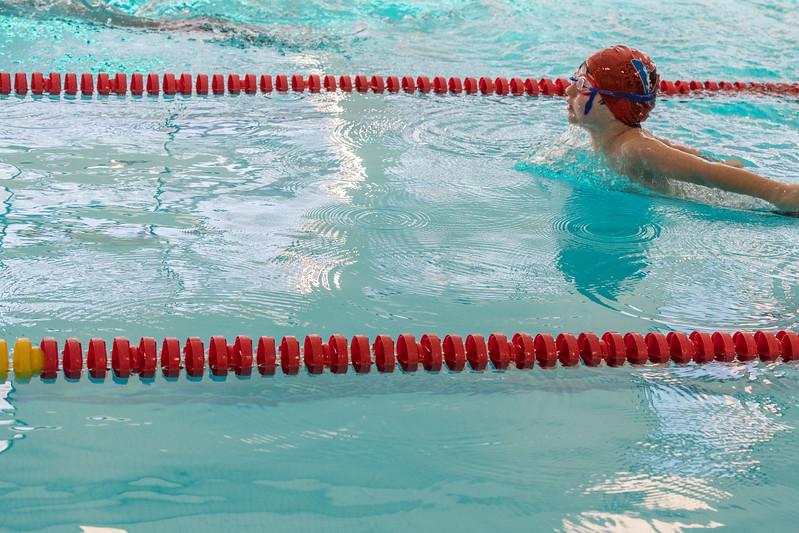 Swim Meet - Spfld-3079