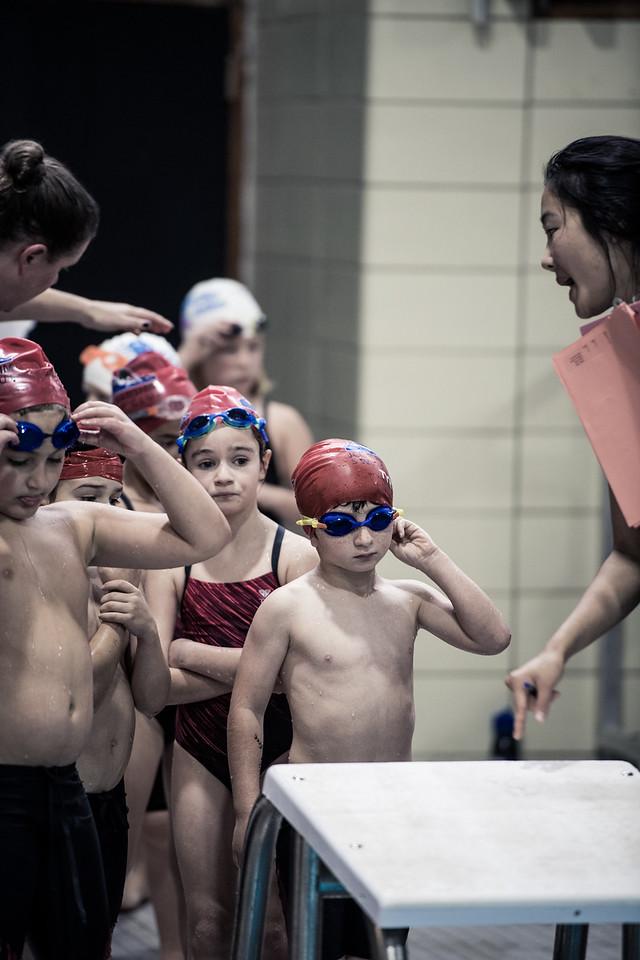 Swim Meet-1333