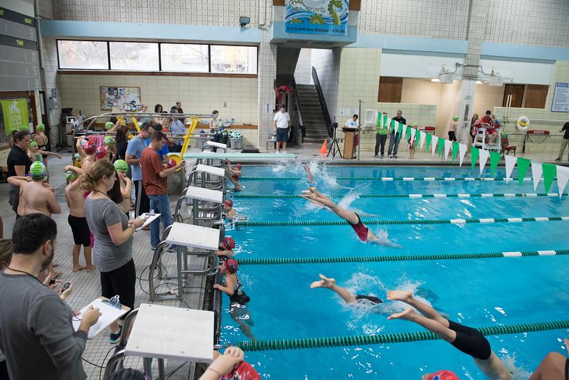 Swim Meet-1429