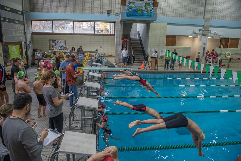 Swim Meet-1428