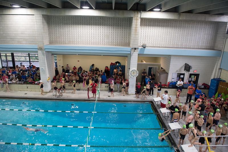 Swim Meet-1368