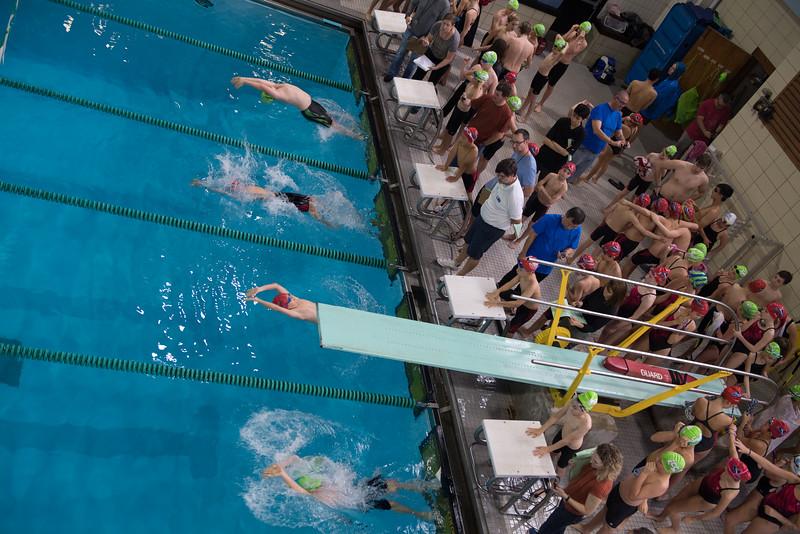 Swim Meet-1490