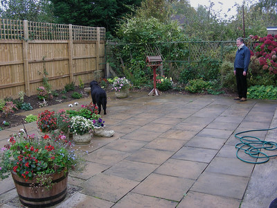 John and one of the dogs, enjoying Anne's lovely patio