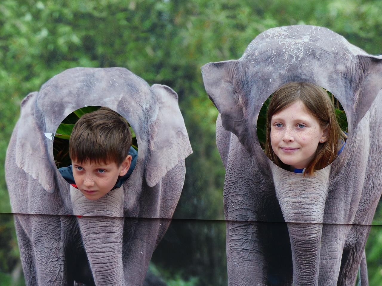 Sydney - Taronga Zoo - Elephants or Grandkids?