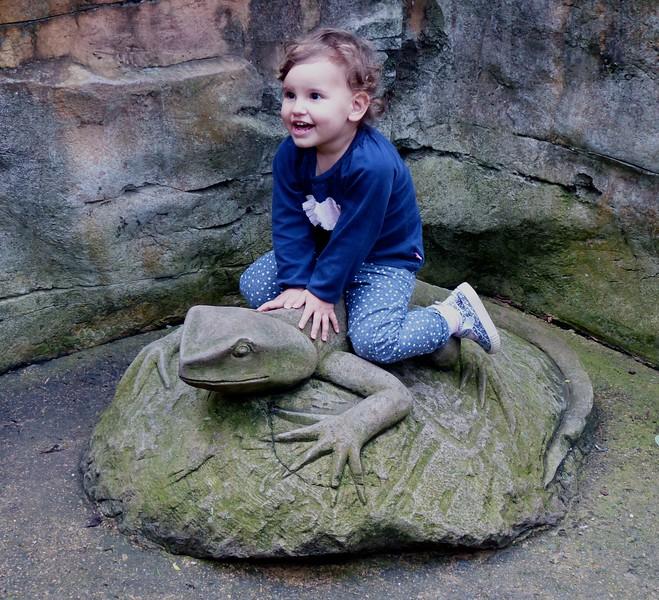 Sydney - Taronga Zoo - Cicely