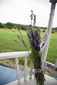 Lavendar Farm (09 Jun 2013)