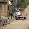 11. ox cart turning