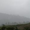8. closeup of rain