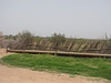 8  fencing