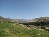 10  mountain view