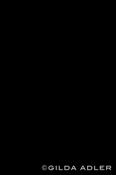 7H8A2518