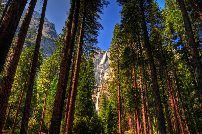 Yosemite Falls from the valley floor, Yosemite, California