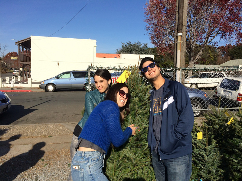 12.22.13:  Christmas tree selection day
