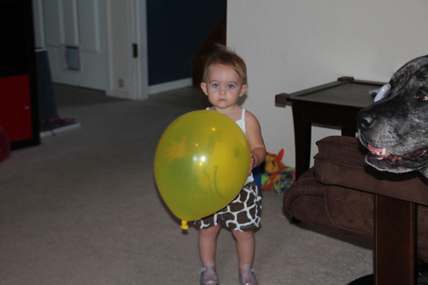 Talia's First Birthday