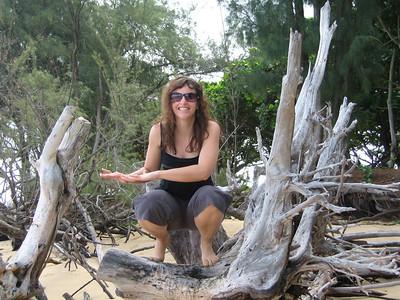 The tree sitting Hula
