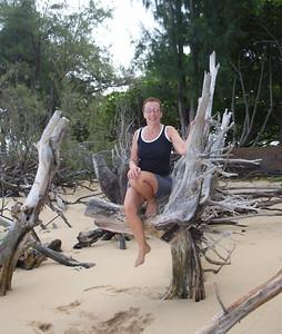 Tree gnome (Tauna's photo)