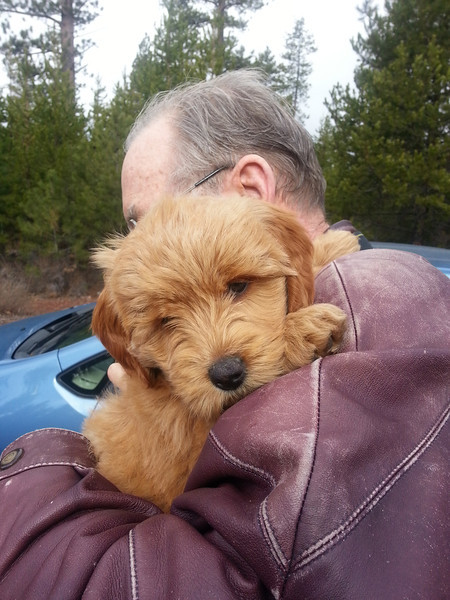 Our first peepy stop along the side of the road.  Grandpa welcomed the chance to hold him.  We had no problems with Teddy on the way home - he was an incredible traveler given it was 10 hours in the crate / car.