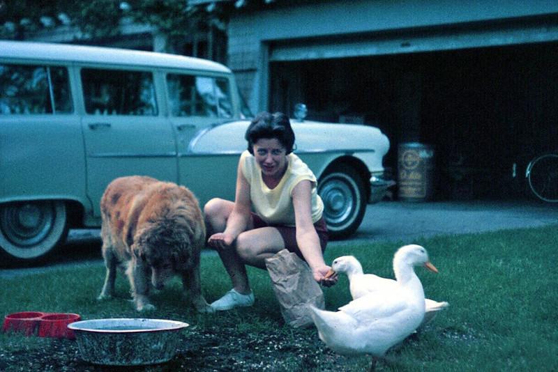 1963 Mary Ann with John and Ducks