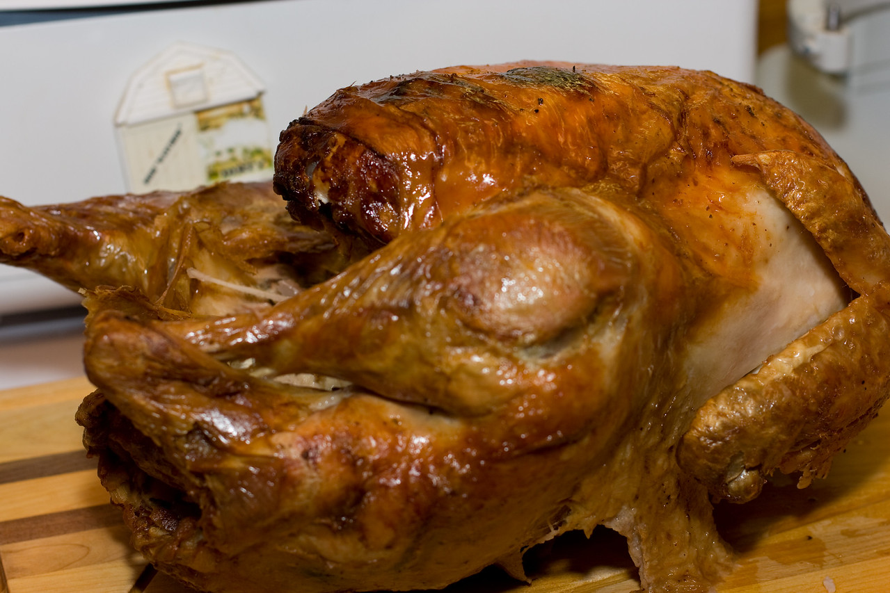 Bob the turkey, looking rather cooked.