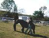 Tara on a Pony