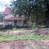 Cottonwood House<br /> 1975