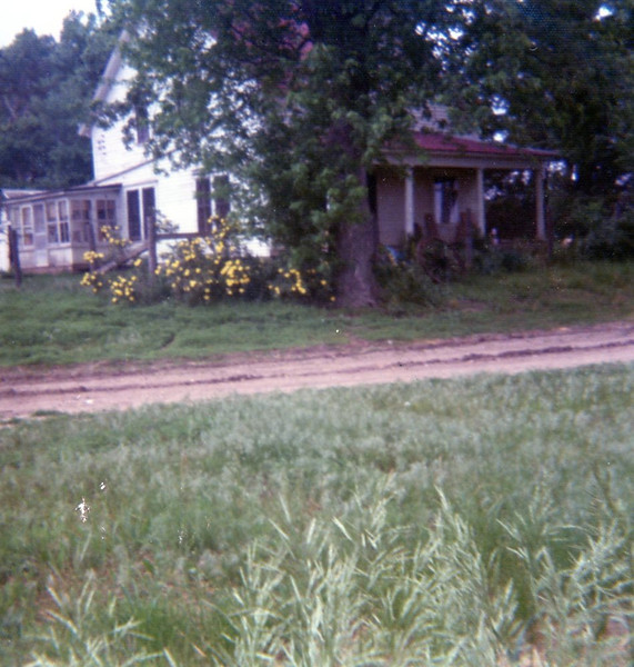The Cottonwood House, our second house in the country, located southeast of Wayne, where we lived from the summer of 1975 to 1977.