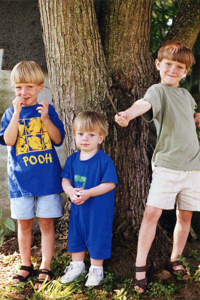 Left to right: Seth (age 5), Benjamin (18 months) & Jonah (age 6) Grice<br /> August, 1999