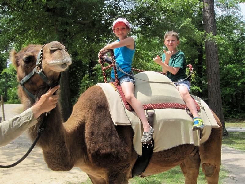 Camel ride - JC & Noah