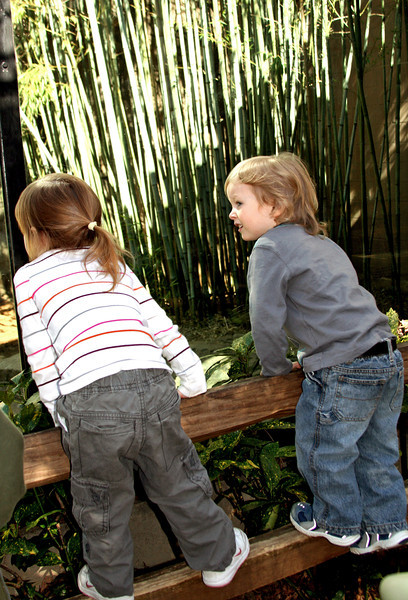 At The Zoo - 2009