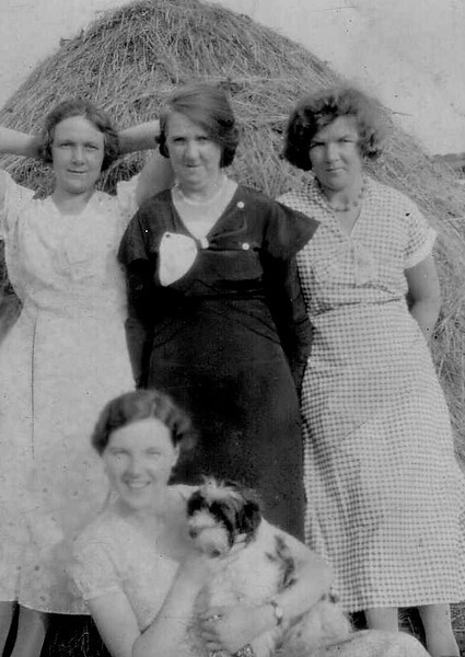 DPB-111: Emily (Cissy) McKeown, Bella McAree, Florie  and May (Maisie) McKeown (front with dog) harvest time in Aghalee in earlier 1930's.