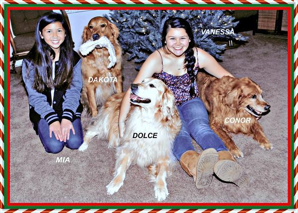 2010 Christmas Cardwnames