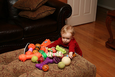 Aiden playing with ALL the dog toys Tate got out.  Jasmine would be going crazy it she knew!