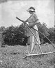 1939 Ruth With Hay Rake