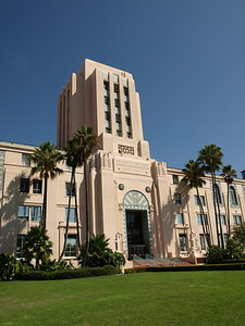 Molly and Vox's wedding was held at the San Diego County Administration Building - Dan Cherrier's old job site.