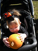 Carlyle likes her pumpkin