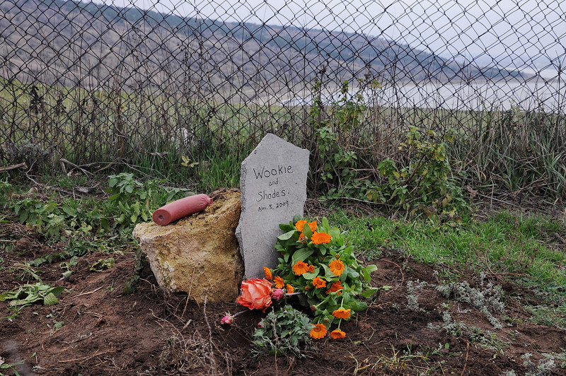 Memorial for Wookie the dog and Shades the cat at our dacha in Polieva, Odessa oblast, Ukraine -