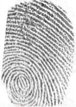 My fingerprint
