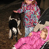 a very friendly little goat at the live nativity scene.  a few moments later this goat jumped up onto Joseph's lap.
